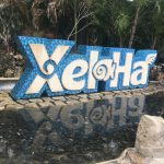 VIDEO of Xel Ha, water park in Mexico